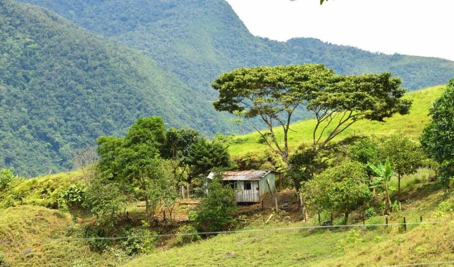 El Pato resiste: La lucha ambiental de la comunidad en donde nacieron las Farc