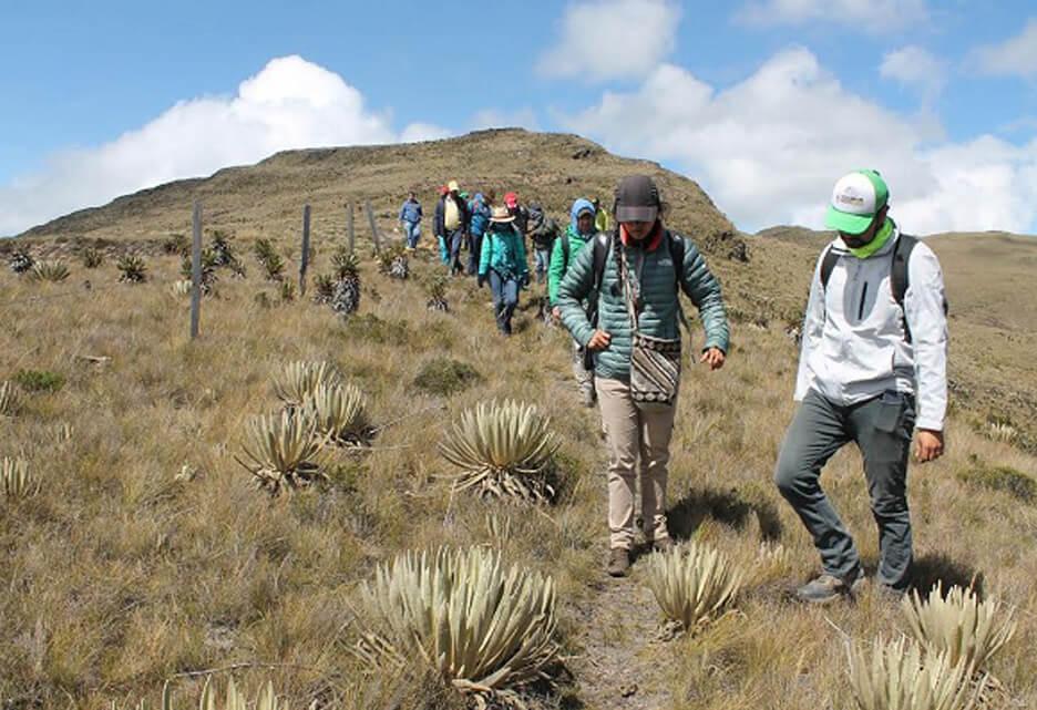 Colombia: en el 'top 3' de países peligrosos para ser líder ambiental