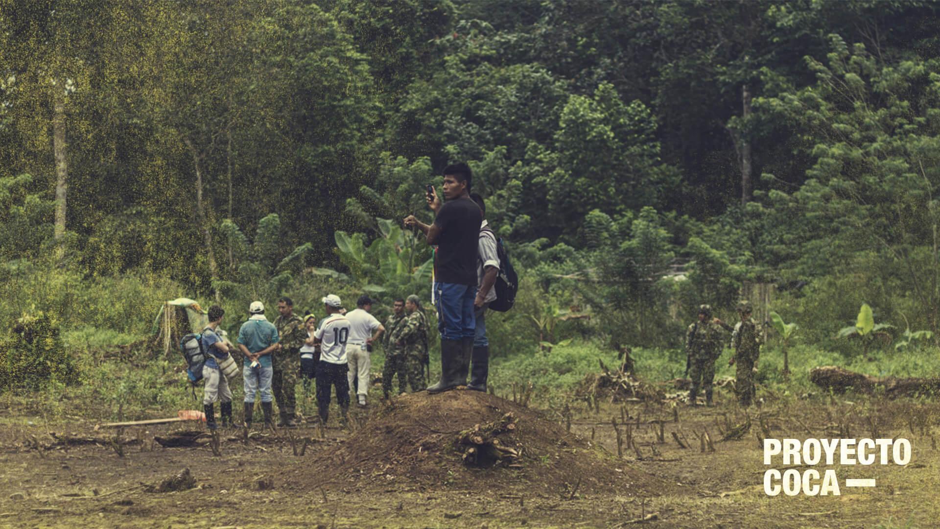 Uno de cada tres asesinatos de líderes sociales ocurre en zonas cocaleras
