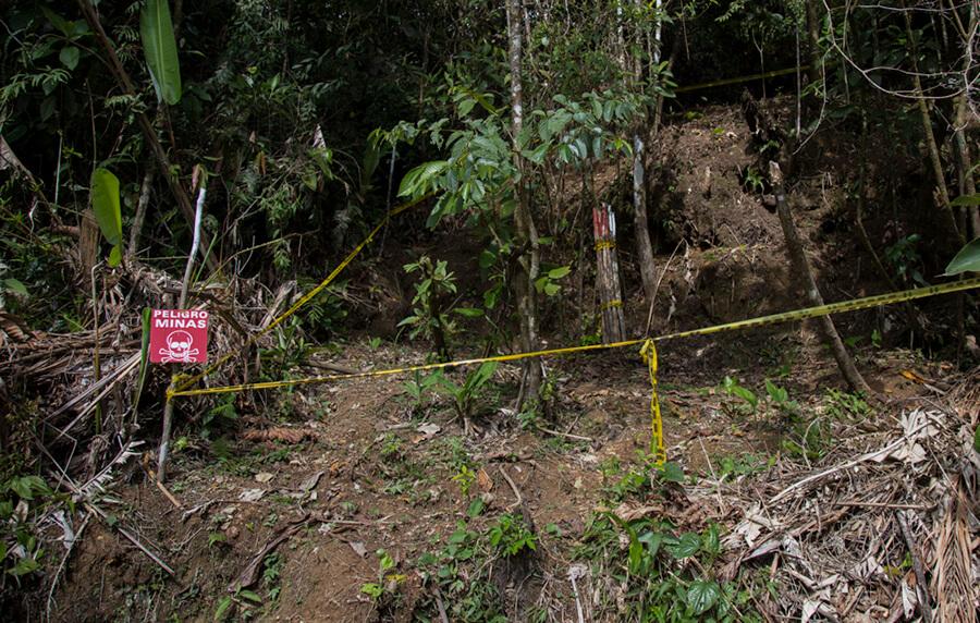 Diez datos para entender el reto de desminar a Colombia