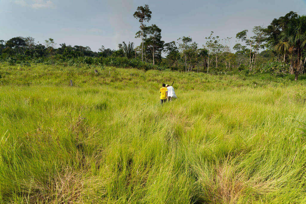La restitución de tierras va en caída libre