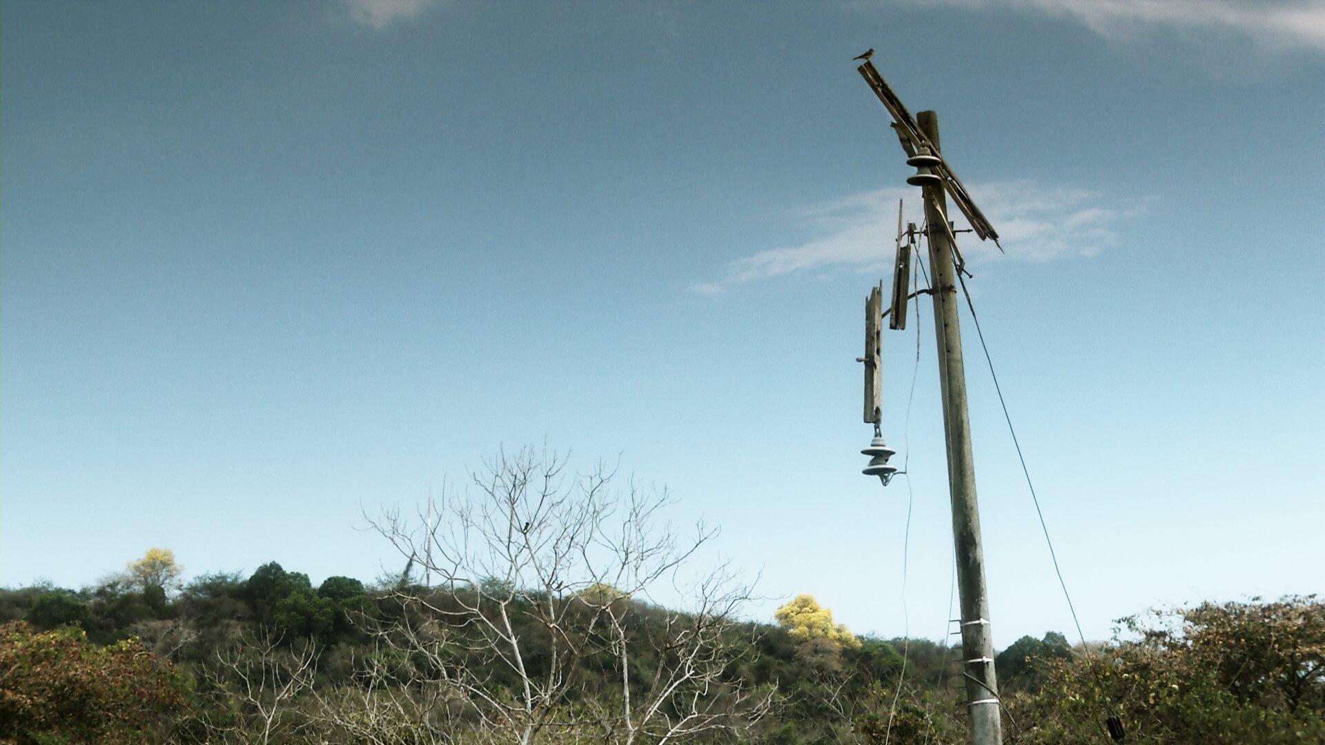 La ley Comala en Colombia: tierras sin hombres y hombres sin tierra