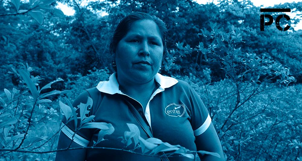 Bolivia: así es como la hoja de coca resiste a la guerra contra las drogas