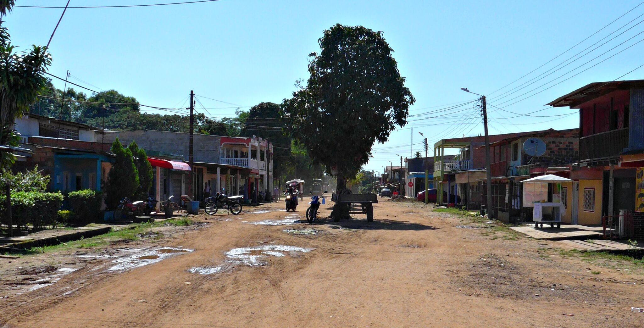 En el Guaviare sueñan con reforestar la tierra que se comió la coca