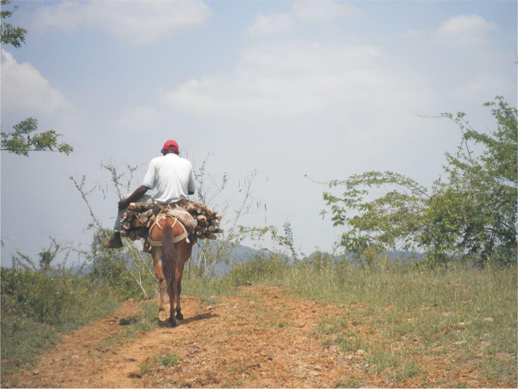 Cuidar el medio ambiente en el Cauca: un trabajo que puede costar la vida
