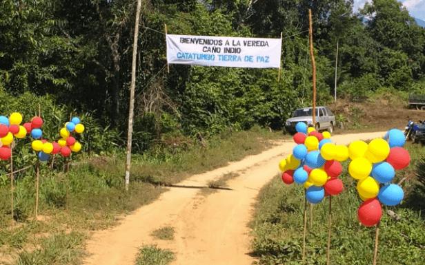 Cincuenta hectáreas de coca tienen enredada una de las Zonas Veredales donde se concentrarán las Farc