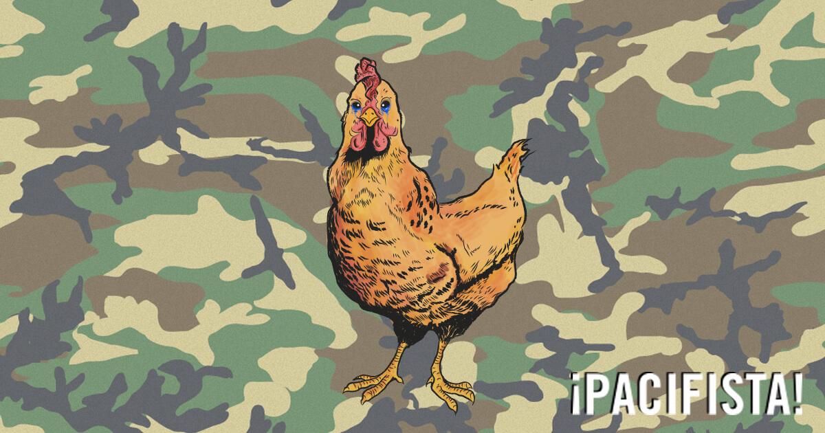 La historia del paramilitar que amaba a una gallina