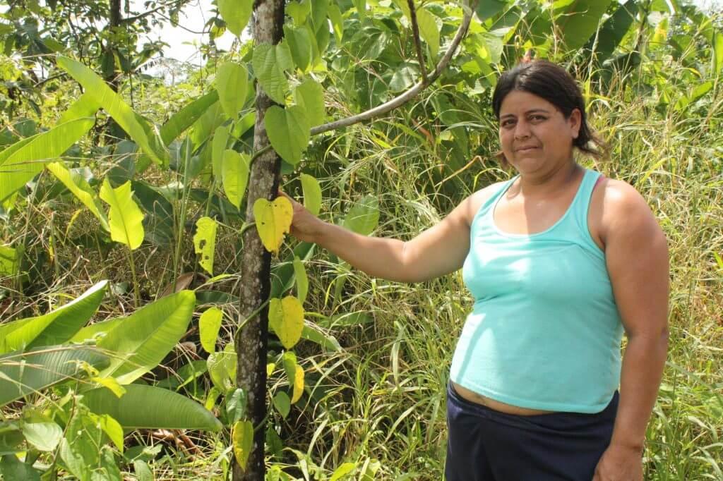 Diario de una cocalera que se está despidiendo de la coca