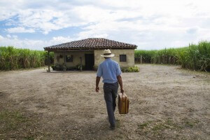 Riopaila, Vives, Peñalosa… Un manual de jugadas para acaparar tierras