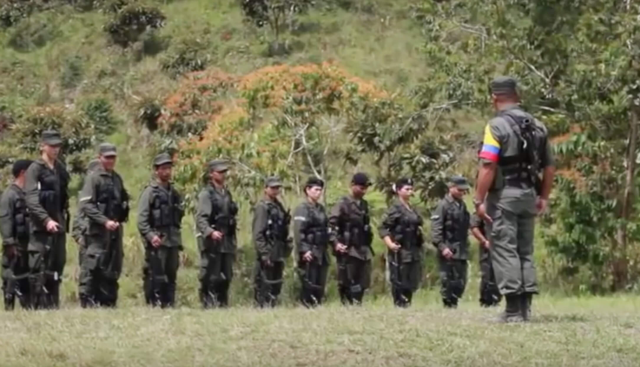 Lo que hay detrás de la disidencia de las Farc en el Guaviare