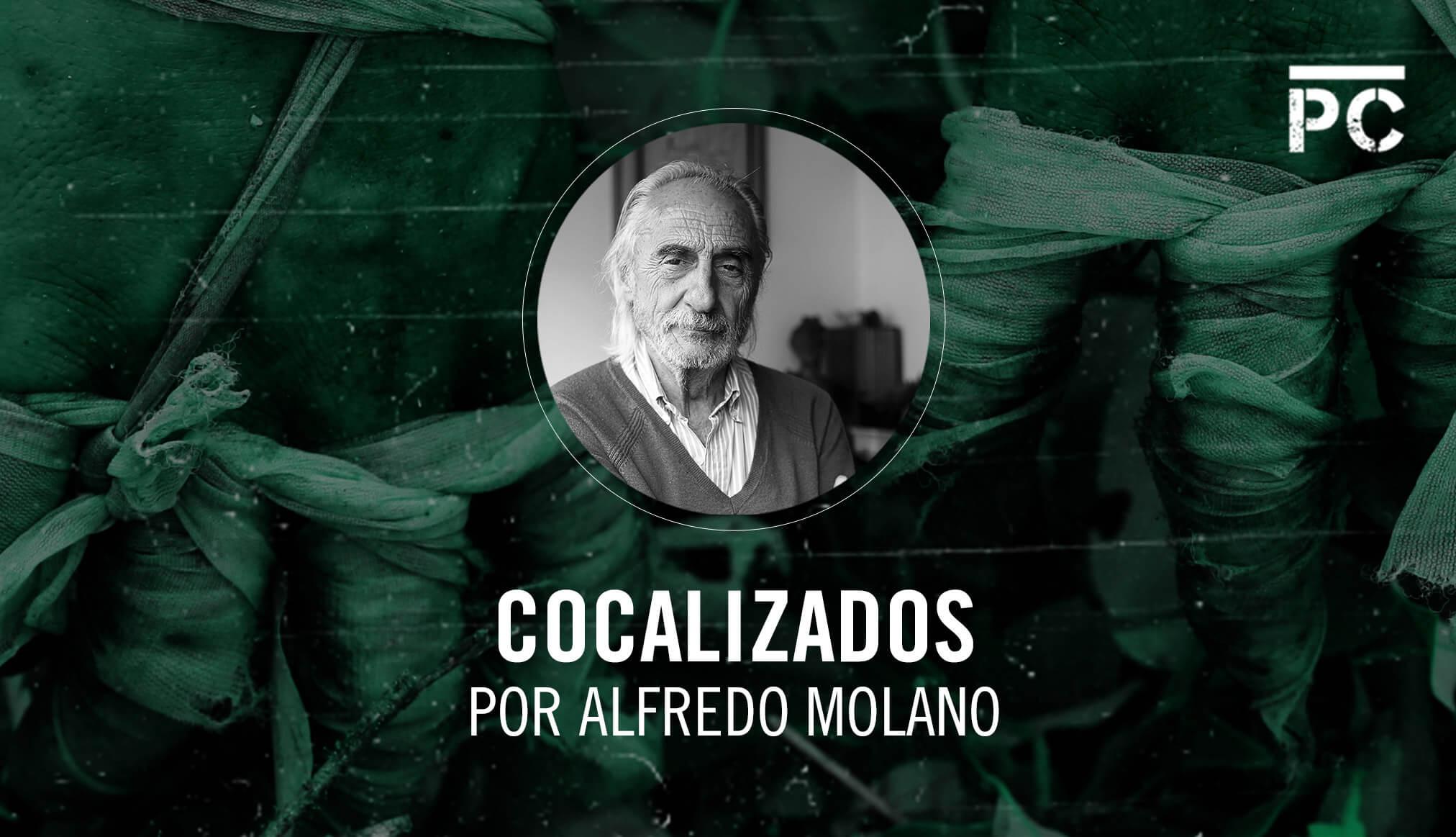 Coca y Farc: de la guerra contra la droga al acuerdo de paz