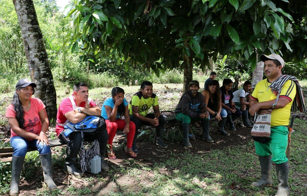 Puerto Bello, un caserío que busca dejar la coca atrás
