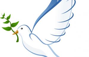 ¿Por qué la paloma de la paz lleva una rama de olivo?