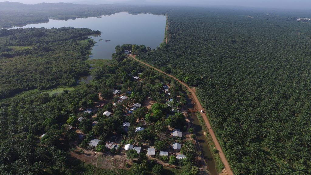 """""""Si no hay agua para la gente, no hay agua para la palma"""": los conflictos de la 'paz' en Marialabaja"""