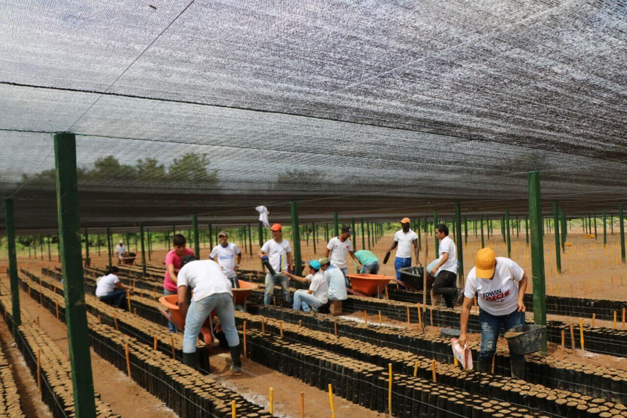Excocaleros de Guaviare: contentos por el presente, estresados por el futuro