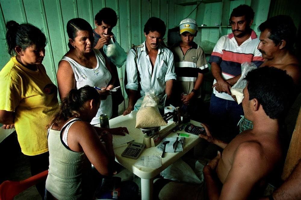 ¿Para garantizar la paz se necesita regular la coca y la cocaína?