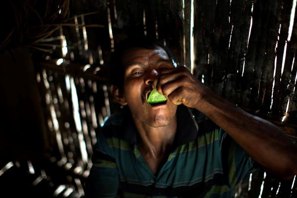 ¿Qué pasaría si regulamos la coca y la cocaína?