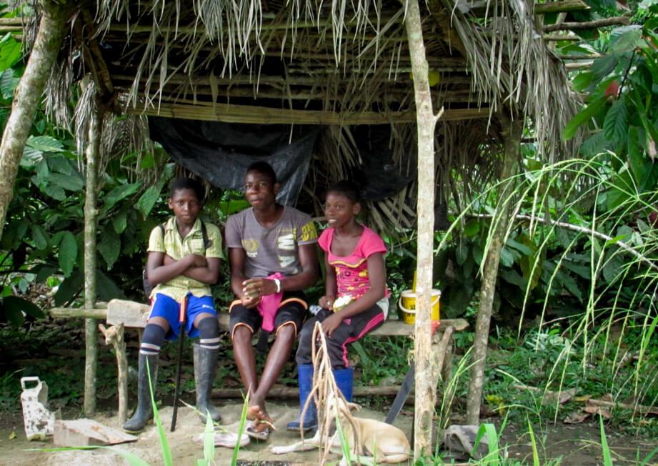 En Tumaco están cambiando coca por cacao y ganaron un premio en París