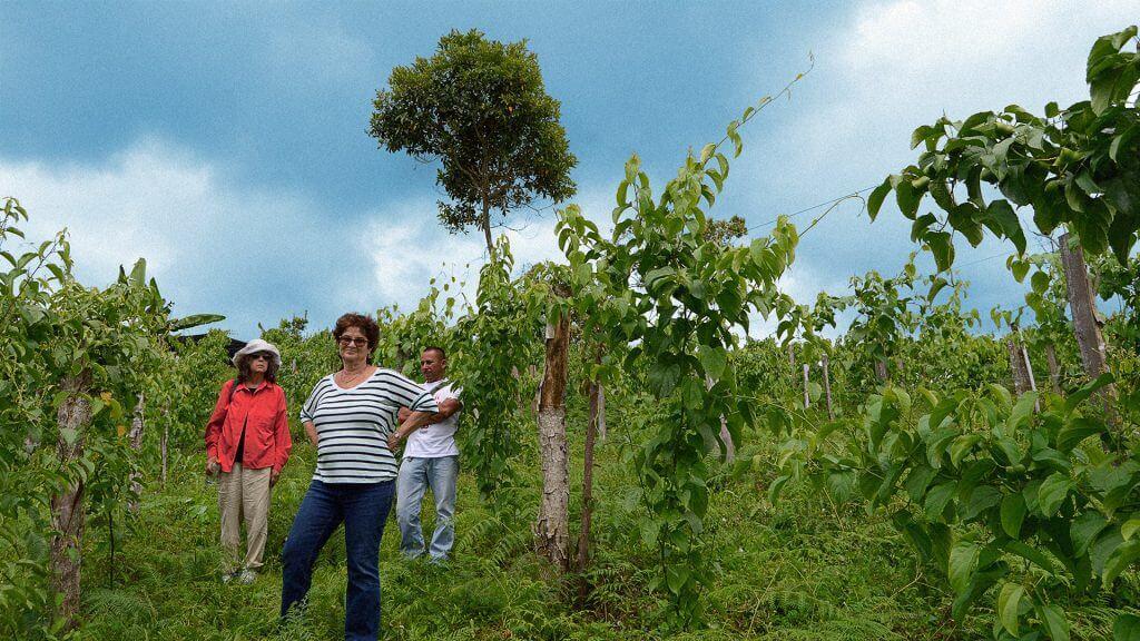 Turismo en zona de exguerrilleros: acompañamos a cuatro extranjeros a Icononzo