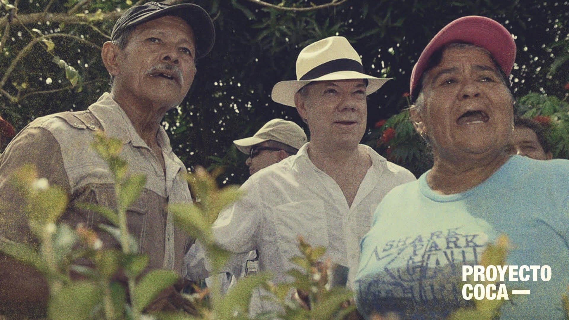 Lo bueno y lo malo del programa de sustitución de coca de Santos