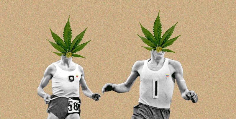Informe: El negocio de la marihuana medicinal ya arrancó en Colombia