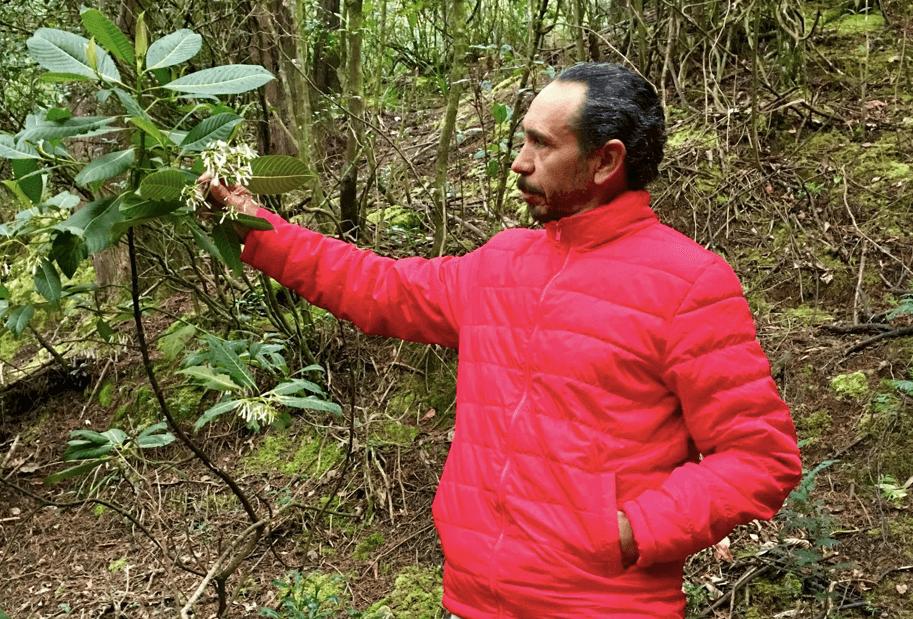 Bosques de Bellavista: el barrio de los cerros que se resiste a ser invisibilizado por Peñalosa