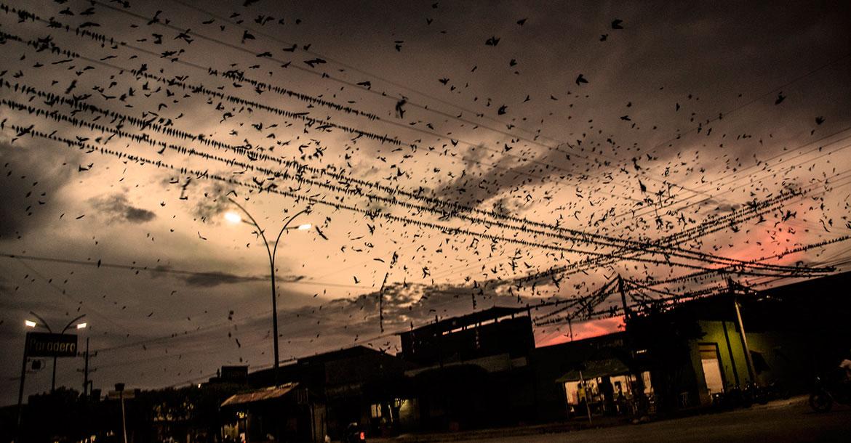 En tres décadas, la militarización del Catatumbo solo ha traído más violencia