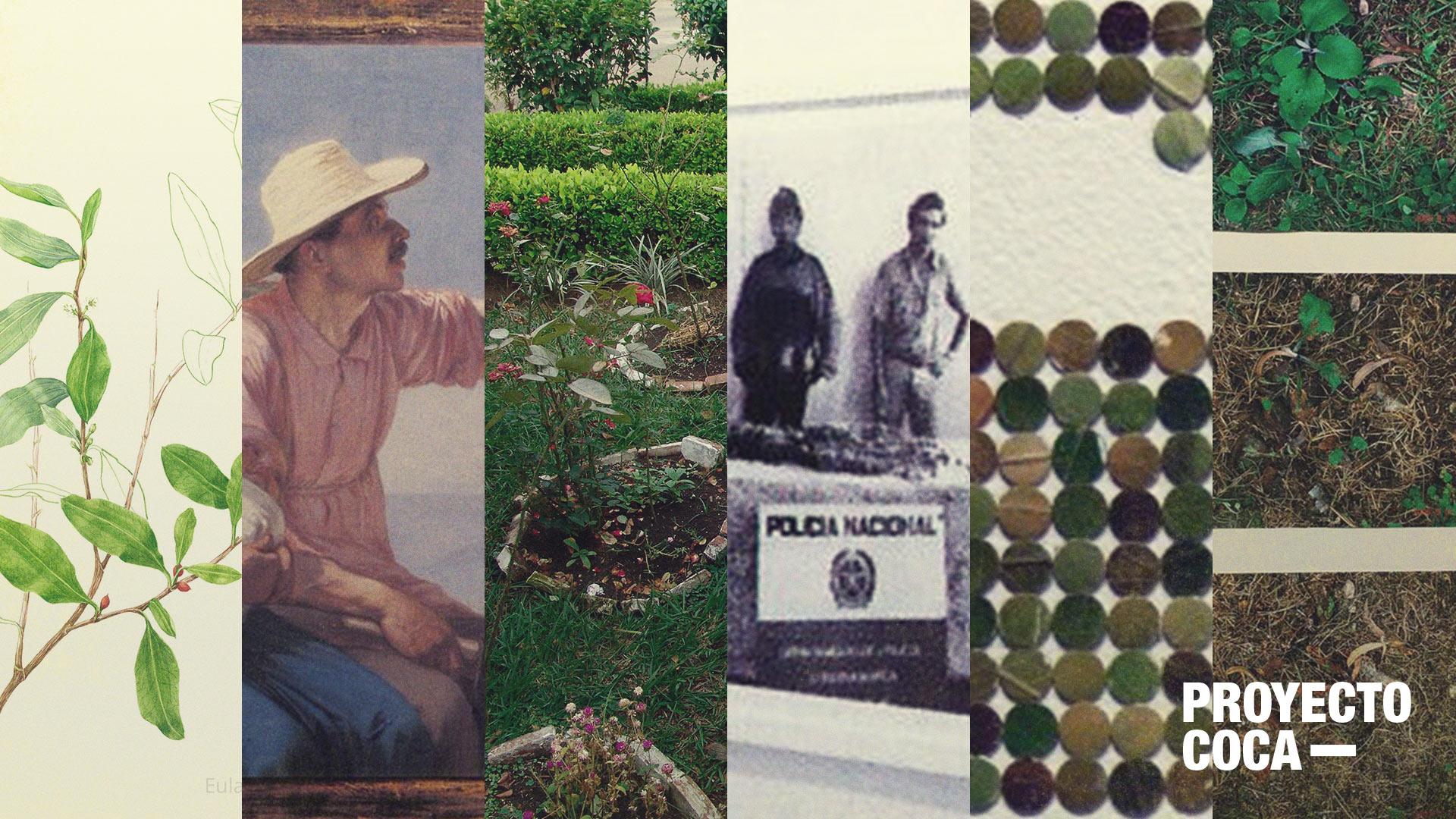 Siete obras de arte imprescindibles sobre drogas en Colombia