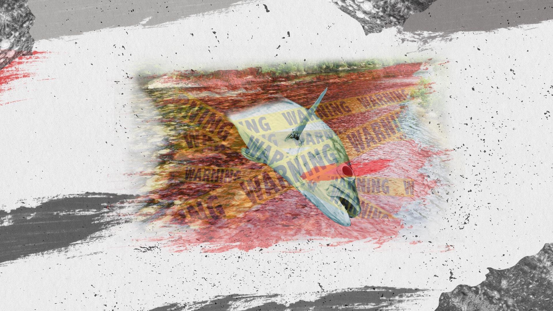Hidroituango y Caño Limón: los atentados contra la naturaleza no se pueden justificar