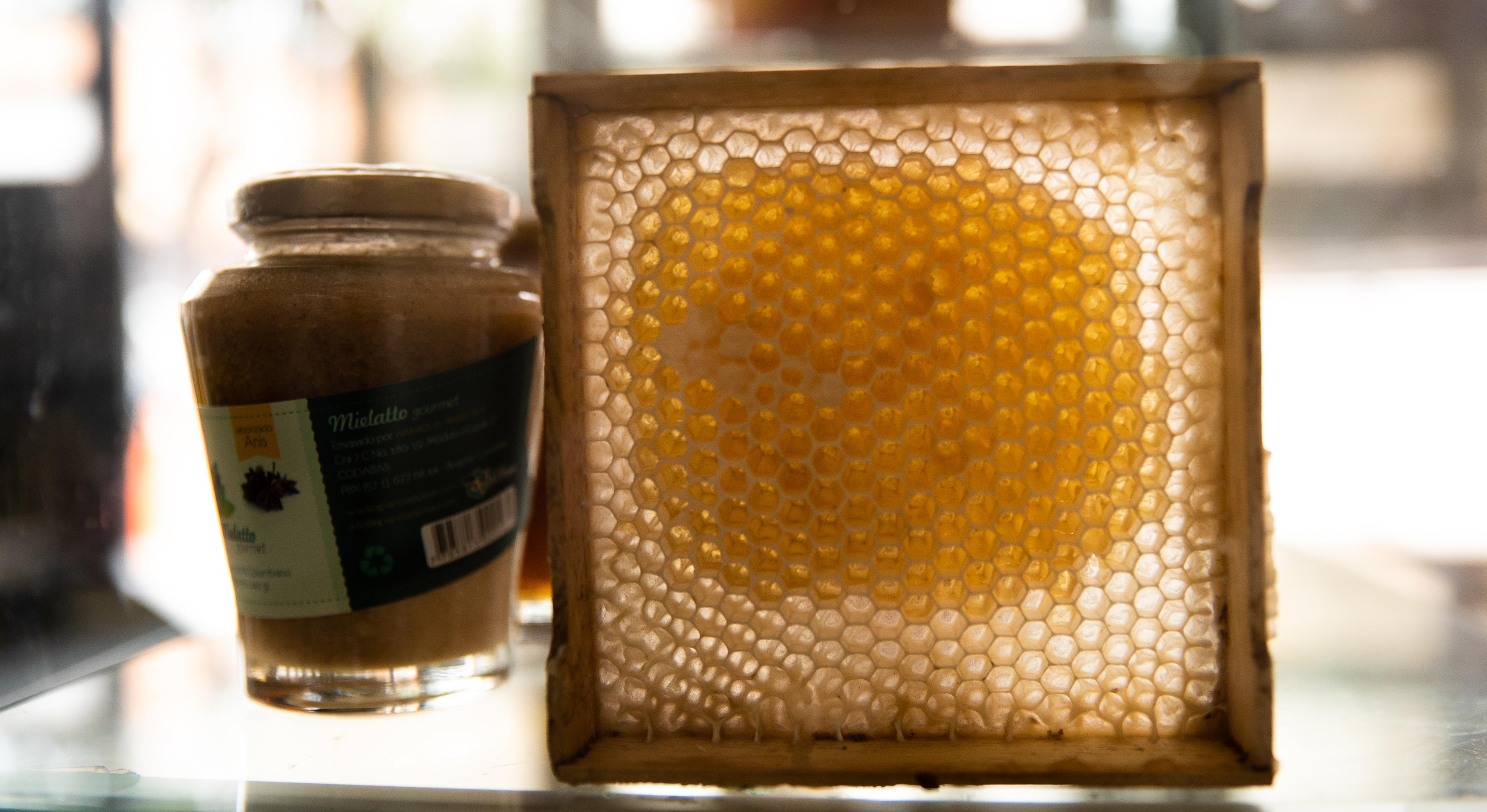 Laboratorio de miel en Santander