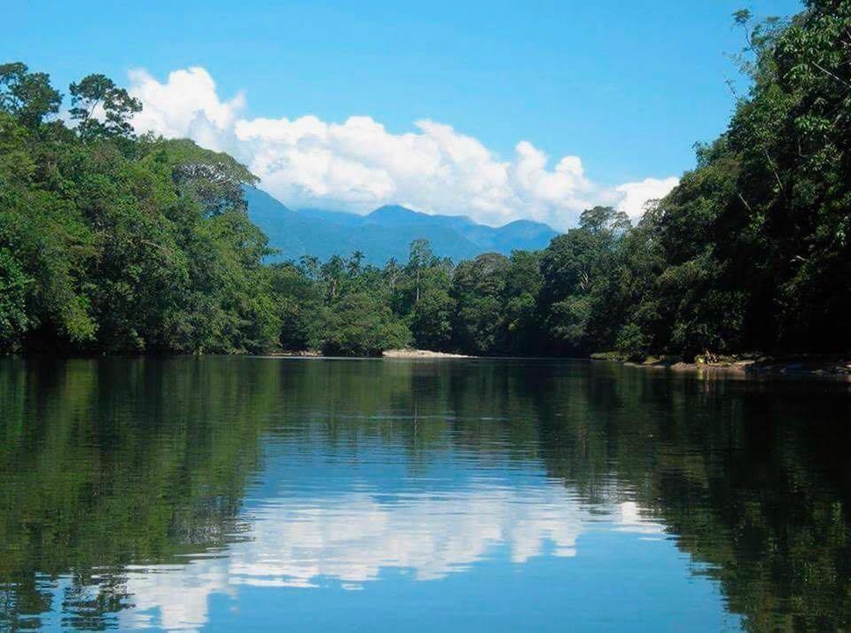 El mercurio está matando a la Amazonía colombiana