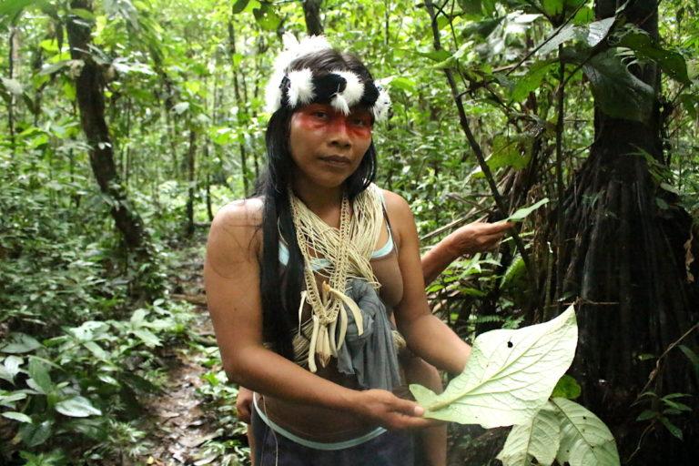 Waoranis-elaboran-mapas-para-salvar-la-selva-del-Ecuador