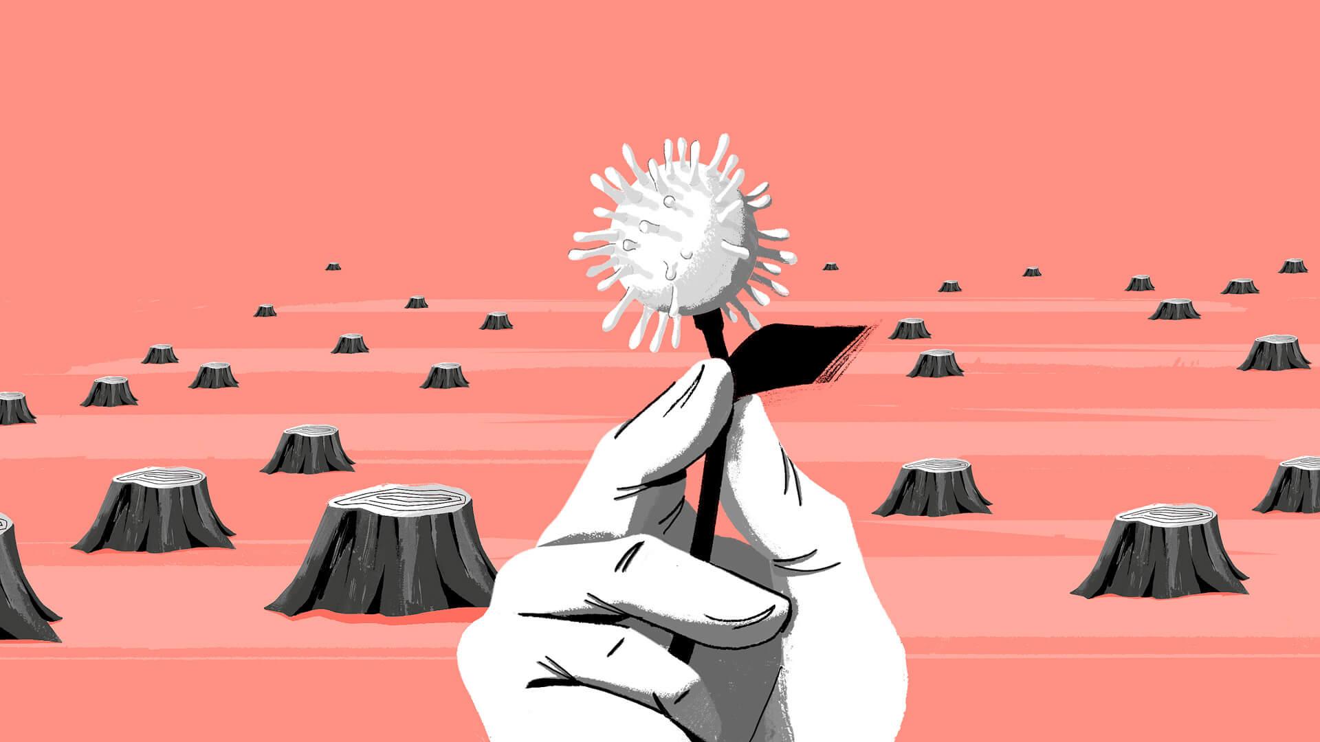 Las nuevas pandemias del planeta devastado