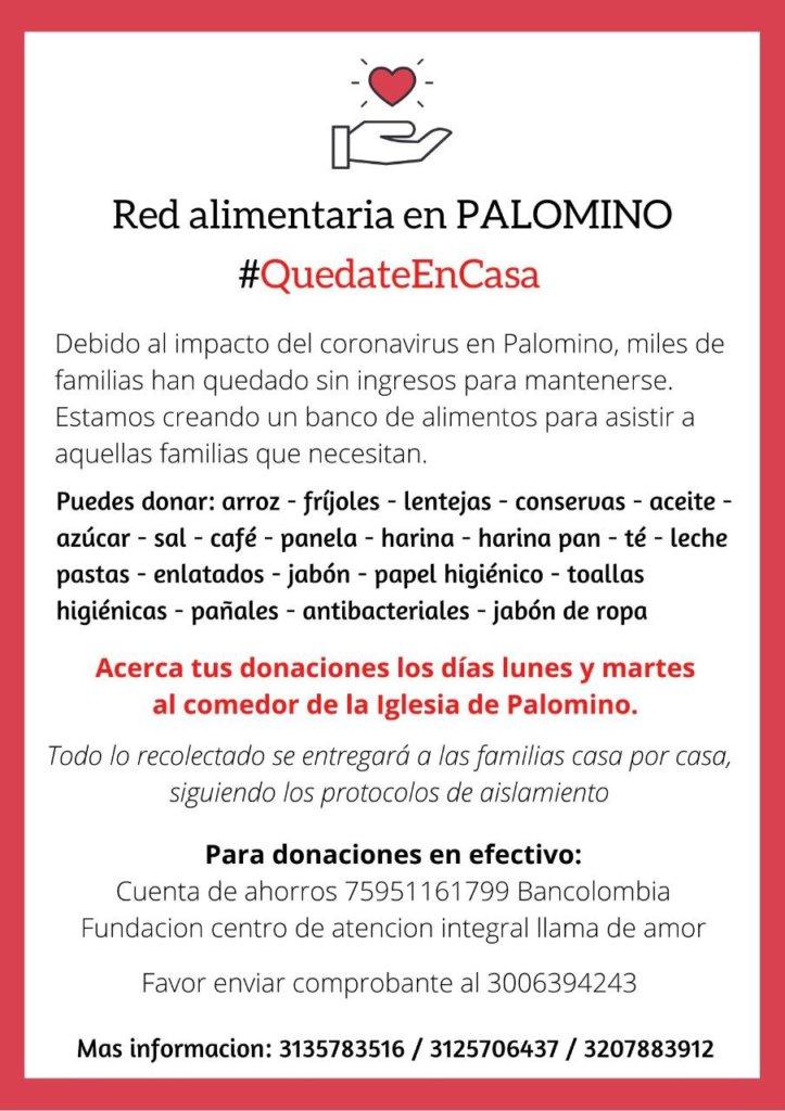Palomino_ayuda