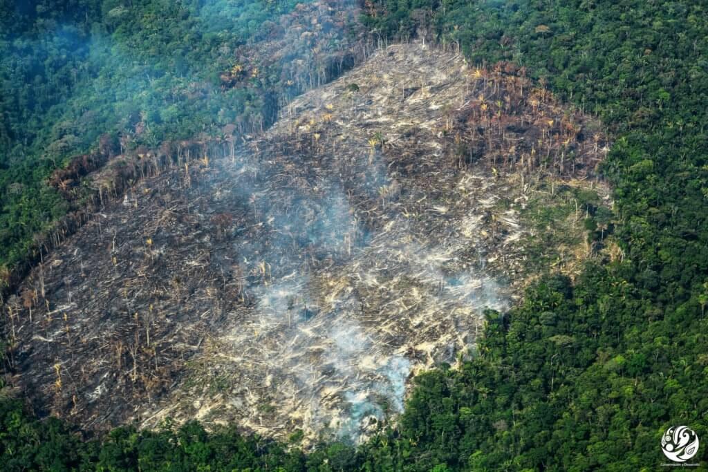 Deforestación en la Amazonia colombiana