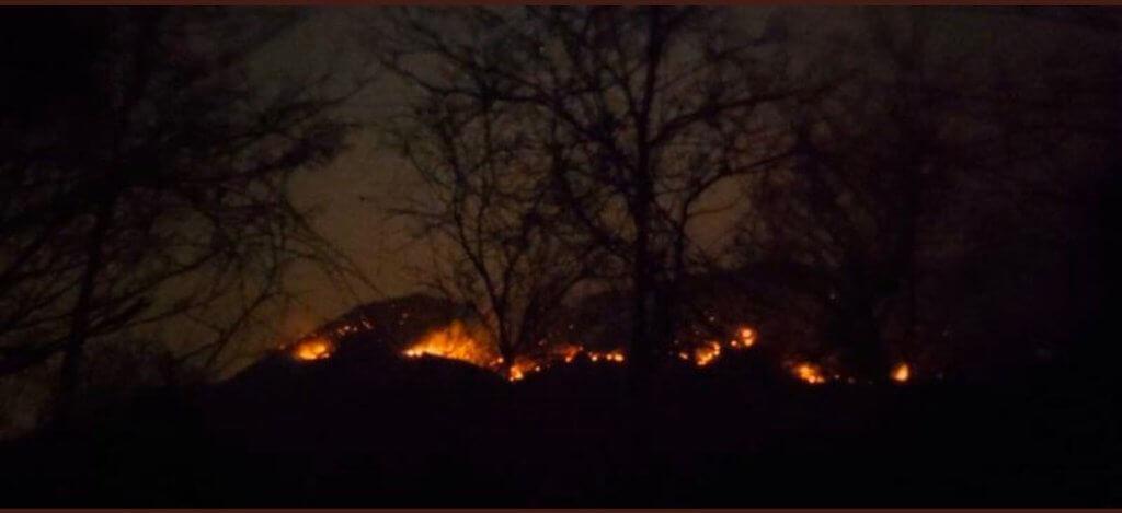 Incendio_Amazonia_Procuraduria