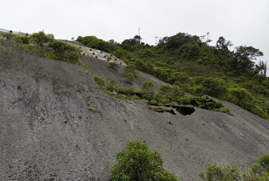 San Fco - Putumayo