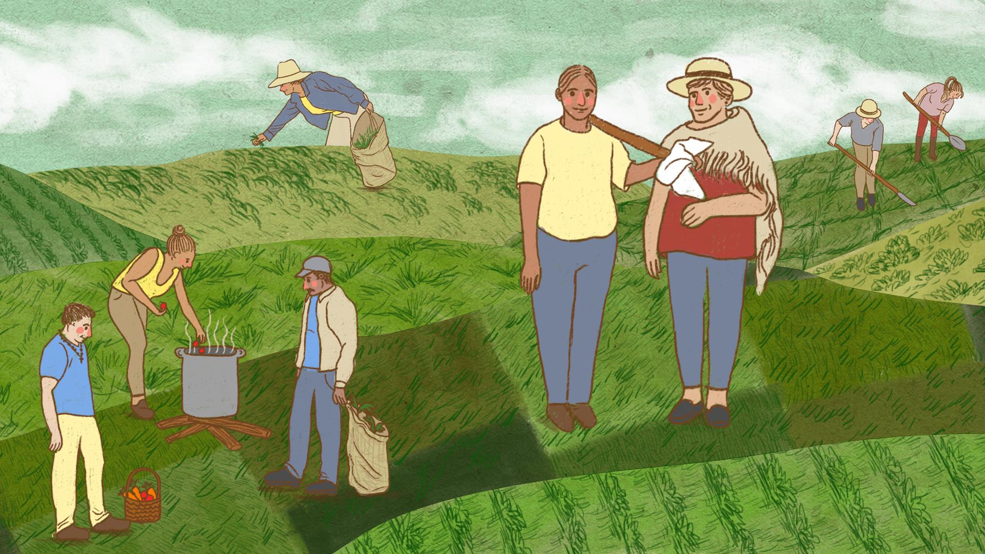 PODCAST |Los campesinos que hackearon el sistema alimenticio en medio de la pandemia