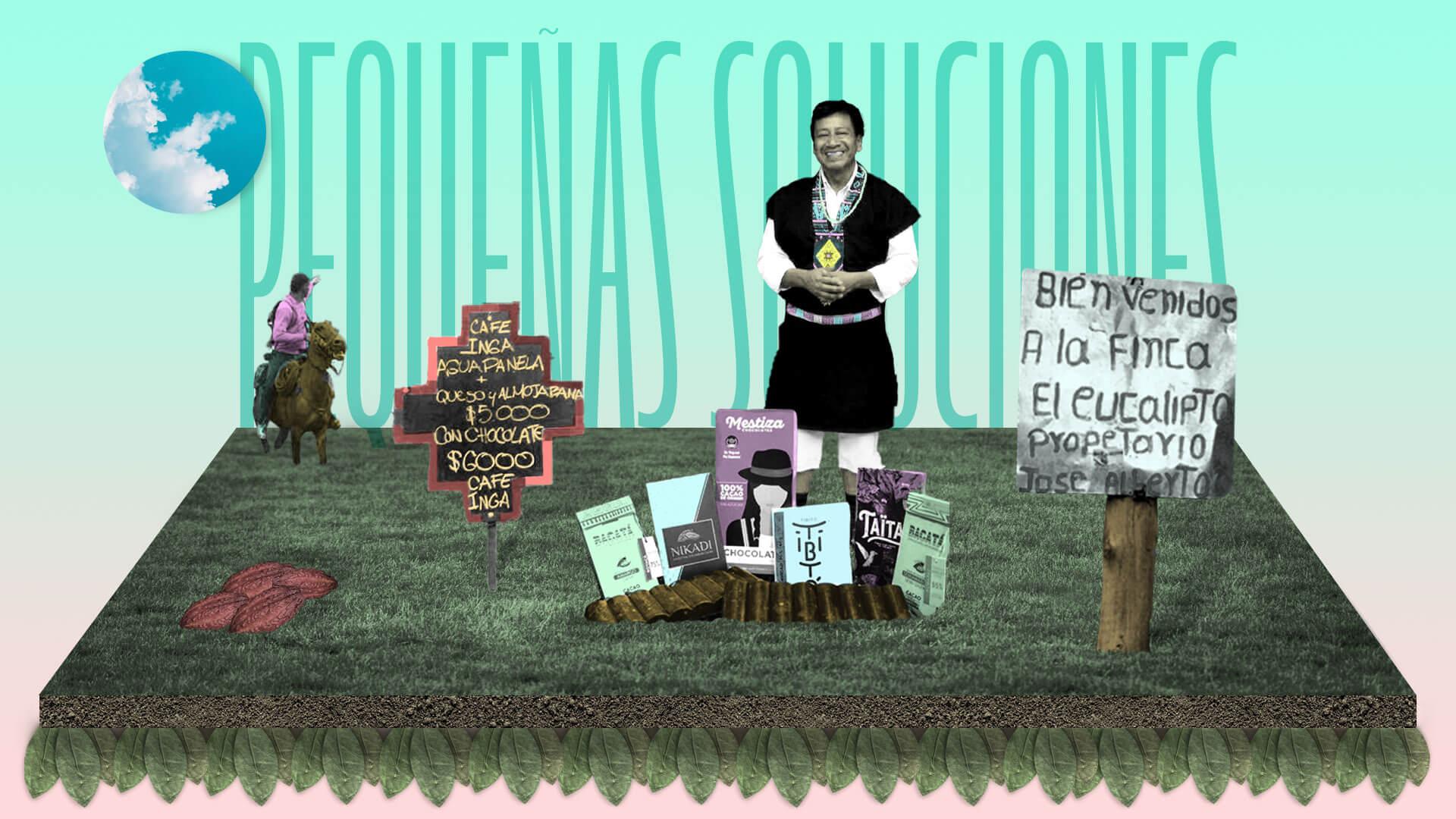 Diez pequeñas soluciones para un gran desafío: sustituir la coca en Colombia