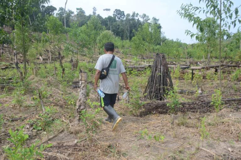 Pedro-herma-en-los-cultivos-de-coca-de-Puerto-Nuevo-Yvette-Sierra-Praeli-768x509
