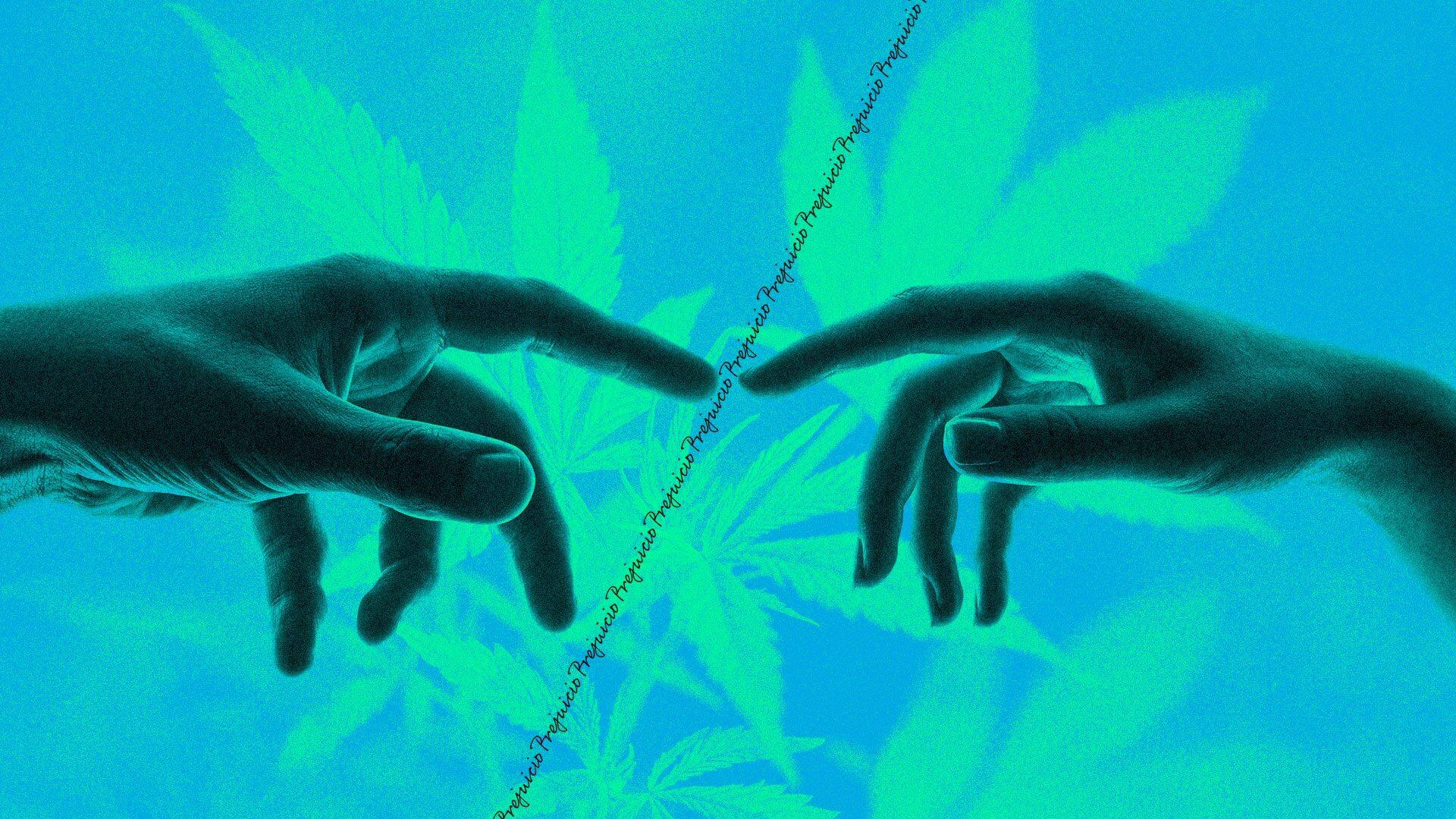 Mientras en EE.UU. avanza la legalización de la marihuana, en Colombia nos volvimos a estancar