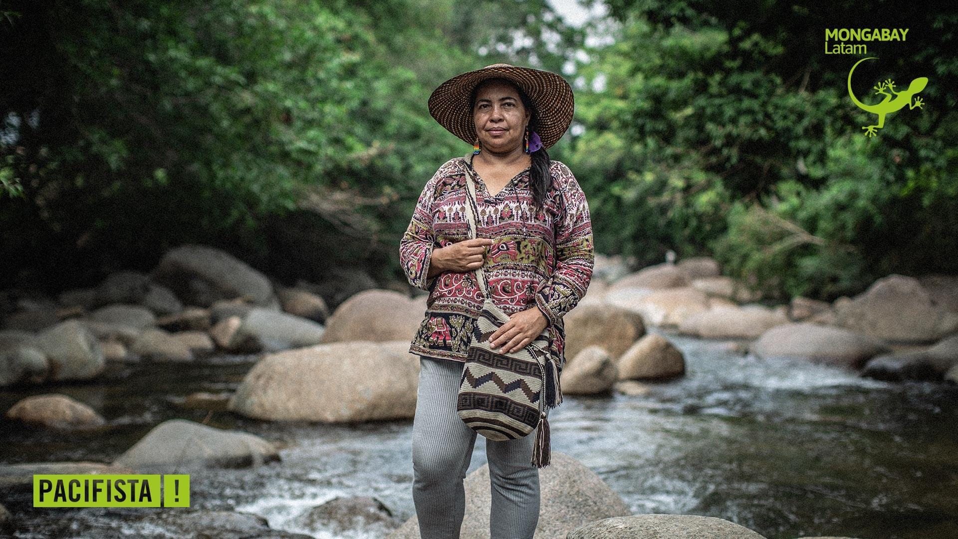 """""""En Caquetá tiene más derechos una vaca que una mujer"""": la lucha de las lideresas campesinas de la Amazonía"""