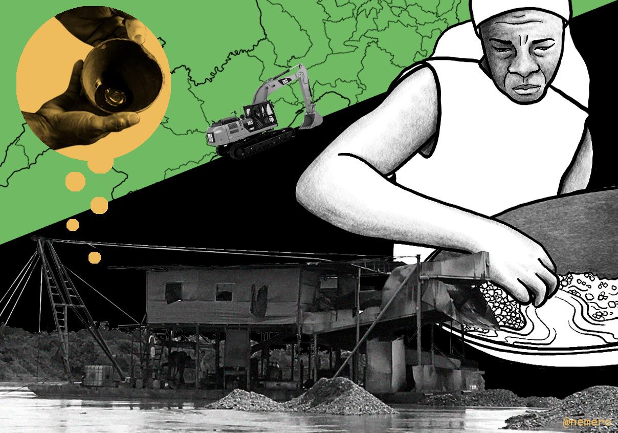 Una mafia devastó la selva en Chocó